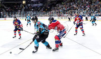 Press Eye - Belfast -  Northern Ireland - 14th September 2018 - Photo by William Cherry/Presseye. Belfast Giants\' Jonathan Ferland with Dundee Stars\' Mike Sullivan during Friday nights Challenge Cup game at the SSE Arena, Belfast.       Photo by William Cherry/Presseye