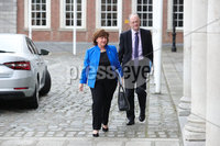 Press Eye - Belfast - Northern Ireland - 31st July 2020 - . Ministers Dianne Dodds and Peter Weir at the meeting of the North South Ministerial Council at Dublin Castle.. Photo by Kelvin Boyes / Press Eye..