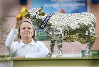 Balmoral Show promotion