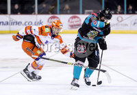 Press Eye - Belfast -  Northern Ireland - 06th January 2019 - Photo by William Cherry/Presseye. Belfast Giants\' Lewis Hook with Sheffield Steelers\' Tanner Eberle during Sunday afternoons Elite Ice Hockey League game at the SSE Arena, Belfast.    Photo by William Cherry/Presseye