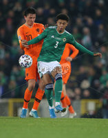 PressEye-Northern Ireland- 16th November 2019-Picture by Brian Little/PressEye. Northern Ireland Jamal Lewis   and Netherlands Steven Berghuis   during Saturday\'s EURO 2020 Qualifier at the National Football Stadium at Windsor Park.. Picture by Brian Little/PressEye