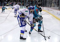 Press Eye - Belfast, Northern Ireland - 06th March 2020 - Photo by William Cherry/Presseye. Belfast Giants\' Matt Pelech with Fife Flyers during Friday nights Elite Ice Hockey League game at the SSE Arena, Belfast.   Photo by William Cherry/Presseye