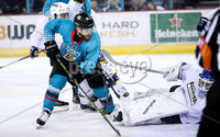 Press Eye - Belfast -  Northern Ireland - 24th August 2019 - Photo by William Cherry/Presseye . Belfast Giants\' Liam Reddox scoring against Herning Blue Fox during Saturday nights Exhibition Game at the SSE Arena, Belfast.    Photo by William Cherry/Presseye