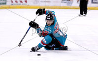 Press Eye - Belfast -  Northern Ireland - 09th February 2018 - Photo by William Cherry/Presseye. Belfast Giants Sebastien Sylvestre during Friday nights Elite Ice Hockey League game at the SSE Arena, Belfast.