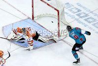 Press Eye - Belfast, Northern Ireland - 06th December 2019 - Photo by William Cherry/Presseye. Belfast Giants\' Ben Lake scoring against the Sheffield Steelers during Friday nights Elite Ice Hockey League game at the SSE Arena, Belfast.       Photo by William Cherry/Presseye