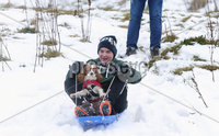 Press Eye - Belfast - Northern Ireland - 4th March 2018. As the snow in Northern Ireland begins to clear Fionn McArdle(16) and his dog Casey take advantage of it in the Fourwinds area of south Belfast. . Picture by Jonathan Porter/PressEye