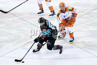 Press Eye - Belfast -  Northern Ireland - 06th January 2018 - Photo by William Cherry/Presseye. Belfast Giants Brendan Connolly with Sheffield Steelers Colton Fretter during Saturday nights Elite Ice Hockey League game at the SSE Arena, Belfast