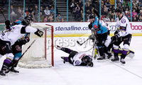 Press Eye - Belfast -  Northern Ireland - 03rd March 2019 - Photo by William Cherry/Presseye. Belfast Giants\' David Rutherford scoring against Manchester Storm during Sunday afternoons Elite Ice Hockey League game at the SSE Arena, Belfast.