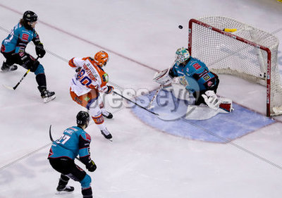 Belfast Giants v Sheffield Steeler...