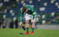 Press Eye-Belfast-Northern Ireland -12th November 2020. National Football Stadium at Windsor Park, Belfast. . 12/11/2020. Northern Ireland  captain  Steven Davis at the final whistle after a 2-1 defeat against Slovakia       during Thursday  night\'s UEFA Euro 2020  Play-off Final  at the National Football Stadium at Windsor Park,Belfast.. Mandatory Credit PressEye