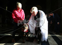 Press Eye - Belfast - Northern Ireland - 6th October 2019. The Pet Service is back at St Anne\'s Cathedral in Belfast. Returning for its third year, the Pet Service took place on Sunday afternoon.  All pets, and well behaved owners, were welcomed at the unique service celebrating all creatures great and small.. The service is held close to St Francis of Assisi Day (celebrated on 4th October), and there was a voluntary blessing for all pets in attendance at the end of the service.. Archdeacon of Belfast Stephen Forde blesses a dog at the end of the service. . Picture by Jonathan Porter/PressEye