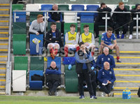 Danske Bank Irish Premiership Europa League Play-Off Semi Final, Windsor Park, Belfast. 9/5/2018. Linfield vs Glentoran. Linfields\'  manager David Healy at the final whistle after defeat against Glentoran . Mandatory Credit@INPHO/ Brian Little