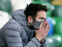 Press Eye - Belfast - Northern Ireland - 12th November 2020. European Championship 2020.  Playoff for Final Tournament - Northern Ireland Vs Slovakia at The National Stadium at Windsor Park, Belfast.. A Northern Ireland fan pictured after the final whistle with Slovakia wining 1-2 in extra time and reach the finals. . Picture by Jonathan Porter/PressEye