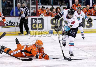 Belfast Giants vs Sheffield