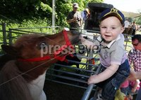 Northern Ireland- 27th May 2012 Mandatory Credit - Photo-Jonathan Porter/Presseye.  The National Countrysports Fair at Moria Demesne.  17-months-old Terence McPolin from Rathfriland feeds the horse at the fair.