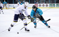 Press Eye - Belfast -  Northern Ireland - 24th August 2019 - Photo by William Cherry/Presseye . Belfast Giants\' Kevin Raine during Saturday nights Exhibition Game against Herning Blue Fox at the SSE Arena, Belfast.    Photo by William Cherry/Presseye