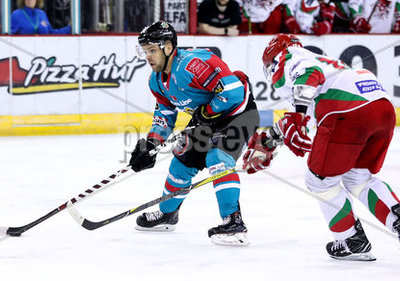 Belfast Giants vs Cardiff