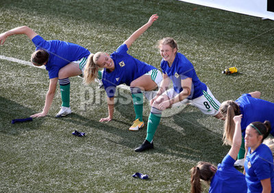 Faroe Islands v Northern Ireland w...