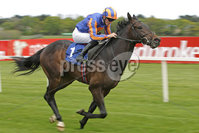 Leopardstown Racing, Leopardstown Racecourse, Co. Dublin 13/5/2012. The Irish Stallion Farms European Breeders Fund Auction Maiden. William Lee steers Cougar Ridge to victory. Mandatory Credit ©INPHO/Morgan Treacy