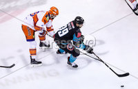 Press Eye - Belfast -  Northern Ireland - 06th January 2019 - Photo by William Cherry/Presseye. Belfast Giants\' Patrick Dwyer with Sheffield Steelers\' Evan McGrath during Sunday afternoons Elite Ice Hockey League game at the SSE Arena, Belfast.    Photo by William Cherry/Presseye