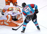 Press Eye - Belfast -  Northern Ireland - 05th January 2018 - Photo by William Cherry/Presseye. Belfast Giants Brendan Connolly with Sheffield Steelers Ervins Mustukovs during Friday nights Elite Ice Hockey League game at the SSE Arena, Belfast