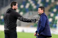 Unite the Union Champions Cup First Leg, National Football Stadium at Windsor Park, Belfast 8/11/2019. Linfield vs Dundalk. Linfield manager David Healy with Dundalk assistant head coach Ruaidhri Higgins. Mandatory Credit  INPHO/Brian Little