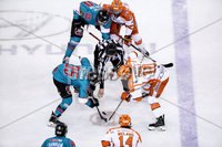 Press Eye - Belfast, Northern Ireland - 06th December 2019 - Photo by William Cherry/Presseye. Belfast Giants with Sheffield Steelers during Friday nights Elite Ice Hockey League game at the SSE Arena, Belfast.       Photo by William Cherry/Presseye