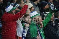 PressEye-Northern Ireland- 16th November 2019-Picture by Brian Little/PressEye. Northern Ireland fans during Saturday\'s EURO 2020 Qualifier at the National Football Stadium at Windsor Park.. Picture by Brian Little/PressEye