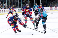 Press Eye - Belfast -  Northern Ireland - 14th September 2018 - Photo by William Cherry/Presseye. Belfast Giants\' Darcy Murphy with Dundee Stars\' Connor Cox during Friday nights Challenge Cup game at the SSE Arena, Belfast.       Photo by William Cherry/Presseye