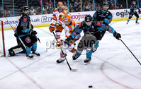 Press Eye - Belfast -  Northern Ireland - 06th January 2019 - Photo by William Cherry/Presseye. Belfast Giants\' Kyle Baun with Sheffield Steelers\' Mark Matheson during Sunday afternoons Elite Ice Hockey League game at the SSE Arena, Belfast.    Photo by William Cherry/Presseye