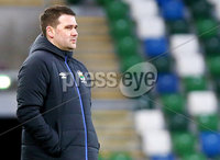 Irish Cup Fifth Round, Windsor Park, Belfast 6/1/2018. Linfield vs Glebe Rangers. Linfield manager David Healy. Mandatory Credit ©INPHO/Jonathan Porter