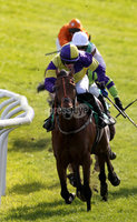 ©Press Eye Ltd Northern Ireland -11th May 2012 - Mandatory Credit - Picture by Matt Mackey/presseye.com. The Viva Las Vegas maiden hurdle at Downpartick Racecourse.. Race winner Paul Townend and horse The Amarillo Kid.