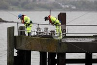 Northern Ireland- 10th May 2012 Mandatory Credit - Photo-Jonathan Porter/Presseye.  Belfast Lough search resumes after reports of missing baby.  A woman, believed to be the baby\'s mother,  was rescued on Wednesday night after falling overboard from a Stenaline ferry.  Members of the Coastguard search the shore of Belfast Lough on the Holywood side..