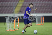 Press Eye - Belfast -  Northern Ireland - 28th May 2018 - Photo by William Cherry/Presseye. Northern Ireland\'s Gareth McAuley during Monday evenings training session at the Estadio Rommel Fernandez, Panama City.
