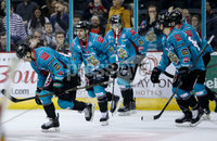Press Eye - Belfast -  Northern Ireland - 11th January 2019 - Photo by William Cherry/Presseye. Belfast Giants Chris Higgins celebrates scoring against HK Gomel during Friday nights Continental Cup Final game at the SSE Area, Belfast.   Photo by William Cherry/Presseye