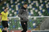 21/02/2020. Danske Bank Irish Premiership match between Linfield and Crusaders at The National Stadium.. Crusaders manager Stephen Baxter. Mandatory Credit  Inpho/Stephen Hamilton