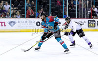 Press Eye - Belfast -  Northern Ireland - 10th March 2018 - Photo by William Cherry/Presseye. Belfast Giants Ryan Martinelli with Braehead Clan\'s Tyler Shattock during Saturday evenings Elite Ice Hockey League game at the SSE Arena, Belfast.