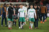 PressEye-Northern Ireland- 12th November  2017-Picture by Brian Little/ PressEye. Dejected  Northern Ireland players Steven Davis and  Jordan Jones after the final whistle   during Sunday night\'s FIFA  World Cup play-off  second leg match at St Jacob Park, Basel.. Picture by Brian Little/PressEye
