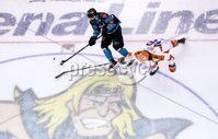 Press Eye - Belfast -  Northern Ireland - 06th January 2019 - Photo by William Cherry/Presseye. Belfast Giants\' Dustin Johner with Sheffield Steelers\' Josh Pitt during Sunday afternoons Elite Ice Hockey League game at the SSE Arena, Belfast.    Photo by William Cherry/Presseye
