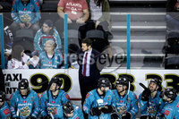 Press Eye - Belfast, Northern Ireland - 01st February 2020 - Photo by William Cherry/Presseye. Belfast Giants\' head coach Adam Keefe during Sunday afternoons Elite Ice Hockey League game against Cardiff Devils at the SSE Arena, Belfast.   Photo by William Cherry/Presseye
