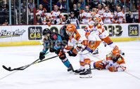 Press Eye - Belfast -  Northern Ireland - 06th January 2019 - Photo by William Cherry/Presseye. Belfast Giants\' Kyle Baun with Sheffield Steelers\' Aaron Johnson during Sunday afternoons Elite Ice Hockey League game at the SSE Arena, Belfast.    Photo by William Cherry/Presseye