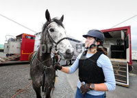 15th May 2017 - Picture by Matt Mackey / PressEye.com. Final preparations are under way for the 150th Balmoral Show.. Emily Magowan from Killinchy and her horse Patrick.