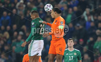 PressEye-Northern Ireland- 16th November 2019-Picture by Brian Little/PressEye. Northern Ireland  Josh Magennis  and Netherlands  Virgil van Dijk  during Saturday\'s EURO 2020 Qualifier at the National Football Stadium at Windsor Park.. Picture by Brian Little/PressEye
