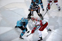 Press Eye - Belfast, Northern Ireland - 01st February 2020 - Photo by William Cherry/Presseye. Belfast Giants with Cardiff Devils during Sunday afternoons Elite Ice Hockey League game at the SSE Arena, Belfast.   Photo by William Cherry/Presseye