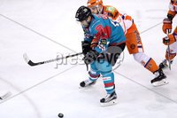 Press Eye - Belfast -  Northern Ireland - 05th January 2018 - Photo by William Cherry/Presseye. Belfast Giants Steve Saviano during Friday nights Elite Ice Hockey League game at the SSE Arena, Belfast