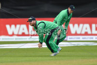 Mandatory Credit: Rowland White / PressEye. Cricket: Walton Tri-Series International. Teams: Ireland (light green) v Bangladesh (dark green). Venue: Malahide. Date: 19th May 2017. Caption: Smart fielding by Ireland\'s Paul Stirling
