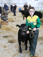 PressEye-Northern Ireland- 16th May 2018-Picture by Brian Little/ PressEye. Matthew Preston, aged 12, from Antrim showing his Dexter Cattle  during the First day of the 2018 Balmoral Show, in partnership with Ulster Bank, at Balmoral Park. Picture by Brian Little/PressEye