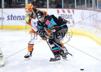 Press Eye - Belfast -  Northern Ireland - 06th January 2018 - Photo by William Cherry/Presseye. Belfast Giants Darcy Murphy with Sheffield Steelers Scott Aarssen during Saturday nights Elite Ice Hockey League game at the SSE Arena, Belfast