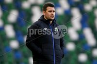 Danske Bank Premiership, Windsor Park, Belfast 2/12/2017. Linfield vs Dungannon Swifts. Linfield\'s manager David Healy. Mandatory Credit @INPHO/Brian Little