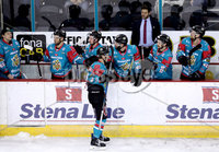 Press Eye - Belfast -  Northern Ireland - 13th January 2018 - Photo by William Cherry/Presseye. Belfast Giants Sebastien Sylvestre celebrates scoring against Nottingham Panthers during Saturday nights Elite Ice Hockey League game at the SSE Arena, Belfast.
